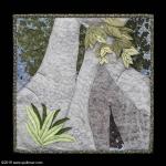 Ficus Macrophyllia: Kathy Wood