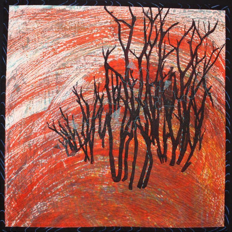 15. Mulga Burning